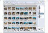 Adobe Photoshop Album Screenshot