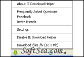 IE DownloadHelper Screenshot