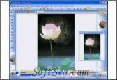 PaintBuster Screenshot