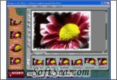 Professor Franklin`s Instant Photo Effects Screenshot