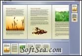 Split XPS Merge Screenshot