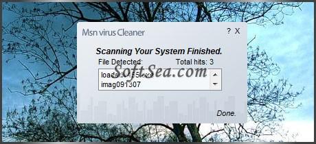 MSN Virus Cleaner Screenshot