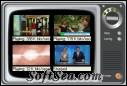 4WebTV